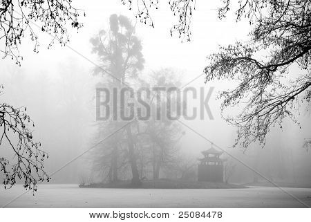 Trees And Arbour In The Mist