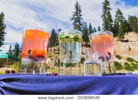 Three Large Pitchers Of Water Sit On A Table With Forest Trees And Summer Sky In The Background. Bev