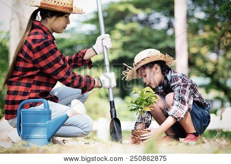 Young Asian Woman Holding Young Plant With Soil,growing Tree,support Concept.