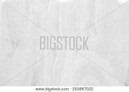 Table Top View Of Wood Texture Over White Light Natural Color Background. Grey Clean Grain Wooden Fl