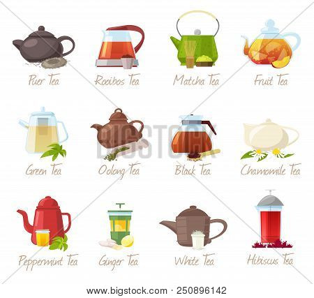 Tea Vector Puer-tea And Orrooibos Or Matcha Fruity Drinks In Teapot Illustration Drinking Set Of Gre