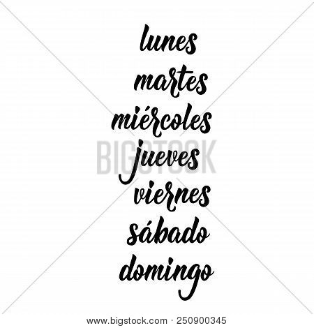 Text In Spanish: Monday, Tuesday, Wednesday, Thursday, Friday, Saturday, Sunday. Lettering Calligrap