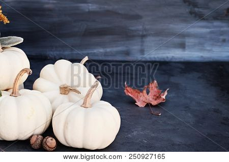 White Mini Pumpkins And Acorns Sitting On Dark Rustic Table With Free Space For Copy Text. Halloween