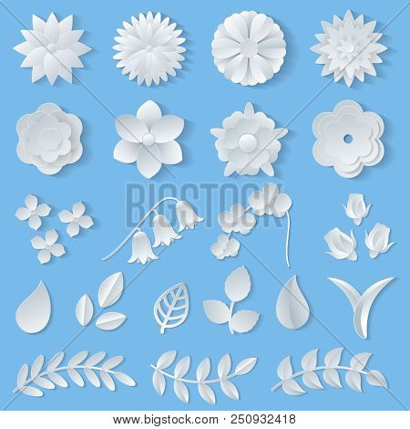 Paper Flowers Vector Floral Wedding Decoration Or Flowered Greeting Card Decor For Flowering Invitat