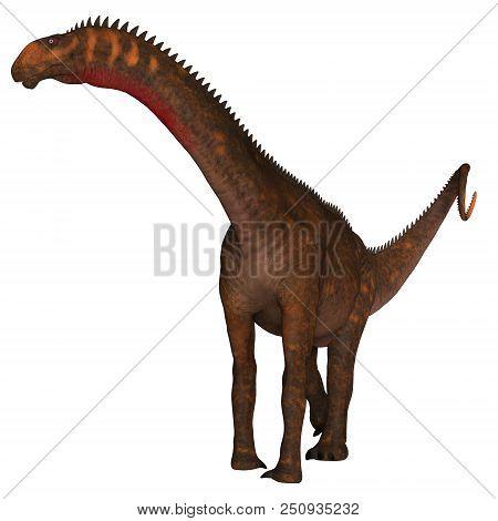 Mierasaurus Dinosaur On White 3d Illustration - Mierasaurus Was A Herbivorous Sauropod Dinosaur That