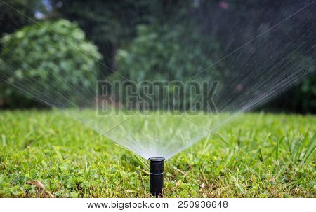 Parks and maintenance concept. Sprinkler watering the lawn in a park, bokeh background.