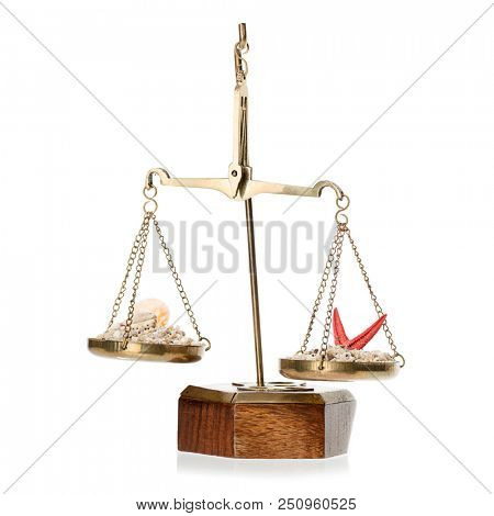 Scales of justice with sand and sea shells for judiciary holiday concept.