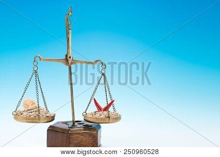 Judiciary Holiday Concept
