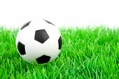 One soccer ball on plastic grass over white background poster