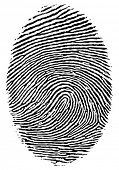 Vector format of finger print. poster
