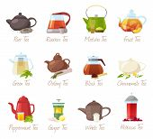 Tea vector puer-tea and orrooibos or matcha fruity drinks in teapot illustration drinking set of green or black tea in cafe isolated on white background. poster