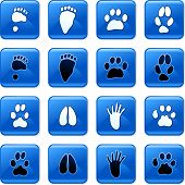 collection of square blue rollover animal track buttons isolated on white poster