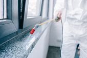 cropped image of pest control worker spraying pesticides on windowsill at home poster