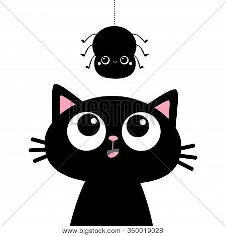 Black Kitten Cat Face Head Silhouette Looking Up To Hanging Spider. Kawaii Baby Animal. Cute Cartoon