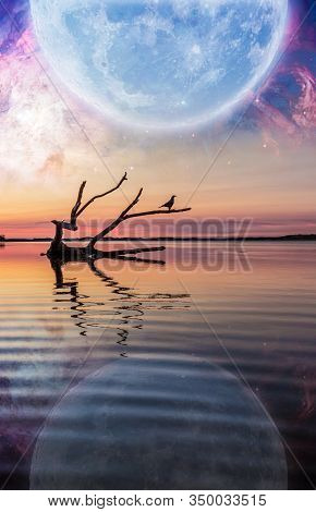 Fantasy Landscape With Driftwood Reflecting In The Water Below Enormous Planet Rising In The Starry