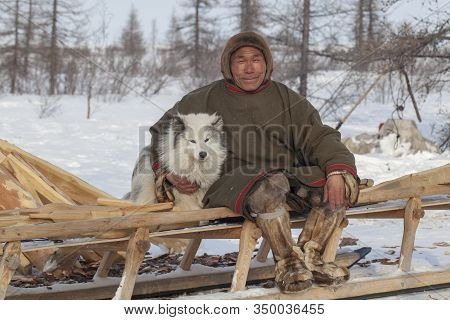 Far North Of Yamal, Tundra, Pasture Nord Reindeers, Closeup Portrait Of Nenets At Age, Close-up Port