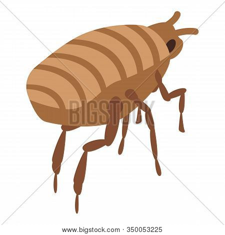 Mite Icon. Isometric Of Mite Vector Icon For Web Design Isolated On White Background