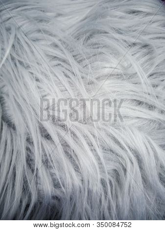 Gray Faux Fur With A Large Pile. Abstract Background Image.