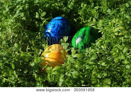 Three Eastereggs In Cress In The Eastertime