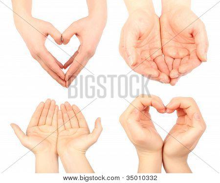 Flat Of Hand