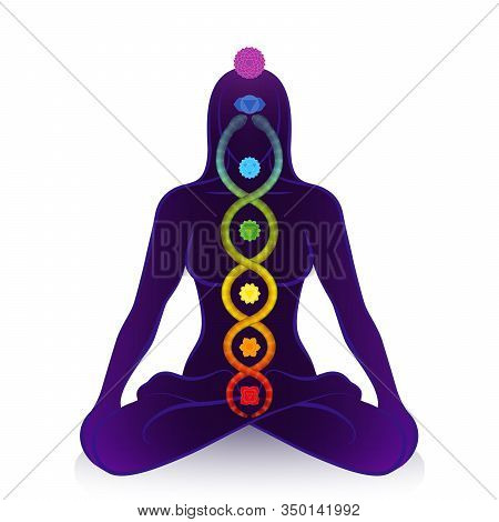 Kundalini Serpent And Chakras Of A Meditating Woman, Symbol For Spiritual Awakening, Healing Power A