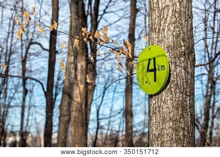 A Wooden Sign Serves As A Trail Marker From Its Mount Nailed To A Tree. The Marker Is Painted Green