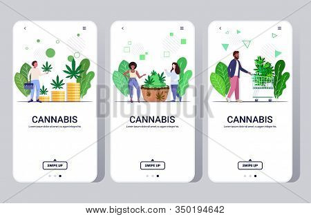 Set People Eating Cannabis Cookie Buying Medical Marijuana Hemp Plants Growing Business Drug Consump