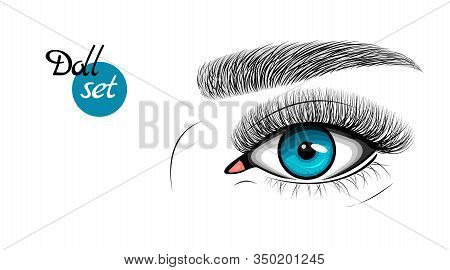 Vector Illustration Of Blue Female Eye With Extended Eyelashes And Eyebrow. Barbie Doll Set.