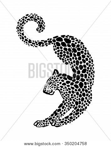 Jaguar Spotted Silhouette. Vector Elegance Wild Animal Graphic Illustration. Black Isolated On White