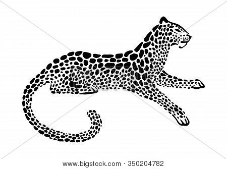 Jaguar Spotted Silhouette. Vector Lying Wildcat Graphic Illustration. Black Isolated On White Backgr