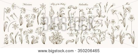 Set Of Spring Flowers: Iris, Lily Of The Valley, Snowdrop, Daffodil. In Art Nouveau Style, Vintage,