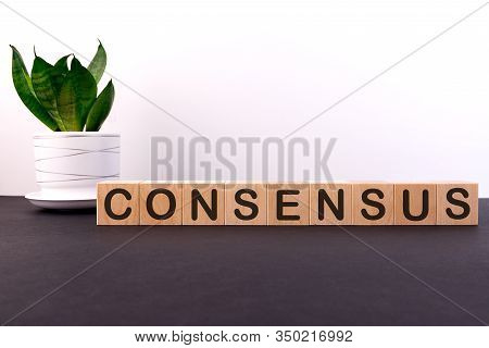 Consensus Word Concept Written On Wooden Cubes On A Dark Table With Flower And Light Background