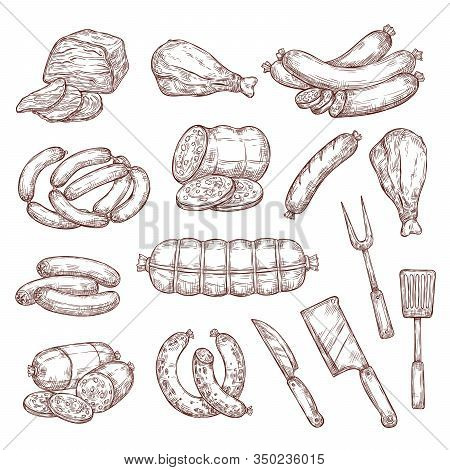 Beef And Pork Sketches, Sausages, Butcher And Barbecue Tools. Meat Food Vector Sketches. Salami, Ham