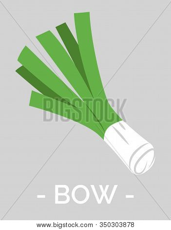 Bow Fresh And Organic Vegetable. Isolated Icon Of Uncooked Onion. Ingredient For Dishes And Meals. N