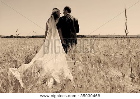 Wedding Couple In The Field