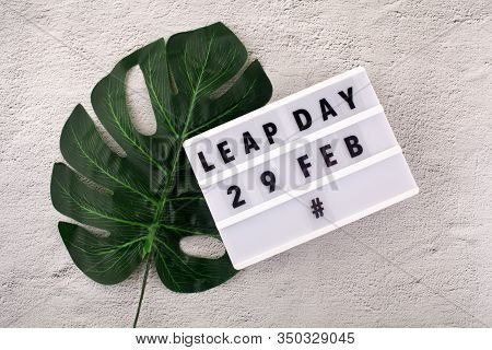 White Block Calendar Present Date 29 And Month February And Plant On Rustic Background. Leap Day