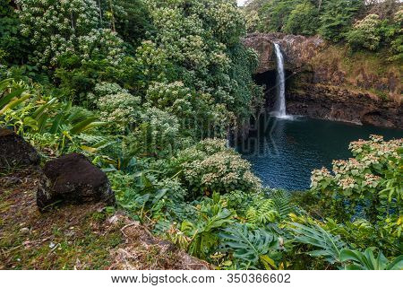 Hilo, Hawaii, Usa. - January 9, 2012: Long Shot On Rainbow Falls, Today With Only Limited Water Flow
