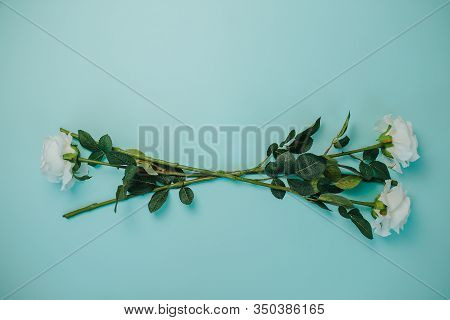 Spring Freshness. White Roses With Green Leaves On Blue Background. Beautiful White Roses With Long