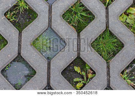 Texture, Concrete Asphalt Cells Eco-friendly Parking For Cars. Outdoor Parking With Natural Fresh Gr