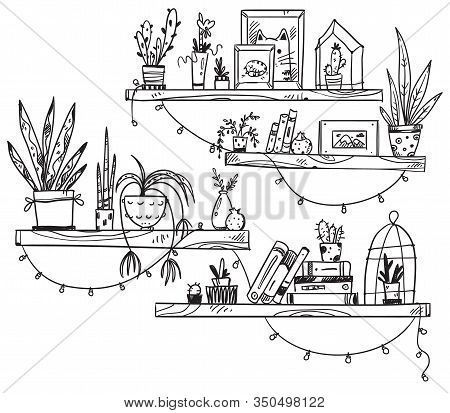 Hand Drawn Bookshelves With Books, Houseplants And Little Souvenirs. A Cosy Place