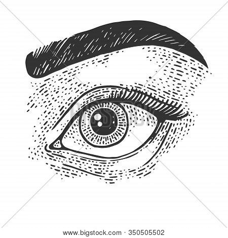 Beauty Woman Eye Sketch Engraving Vector Illustration. T-shirt Apparel Print Design. Scratch Board I