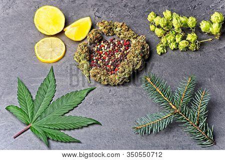 Cannabis Bud And Leaf With Hoppy, Pepper, Lemon And Fir Needles