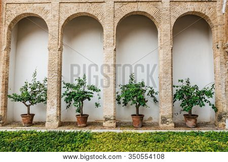 SEVILLE, SPAIN - December 09 2019: Row of potted plants in alcoves between arched pillars in Real Alcazar with fresh green grass in the foreground, Seville, Spain