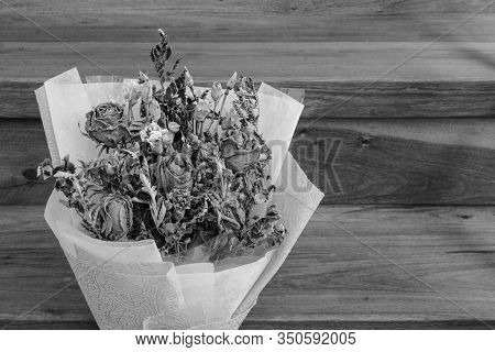 Withered Roses On Wood Floor, Bad Valentine