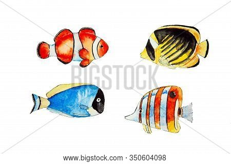 Set Of Tropical Fishes Isolated On White Background. Illustration Od Multicolored Coral Fishes. Hand
