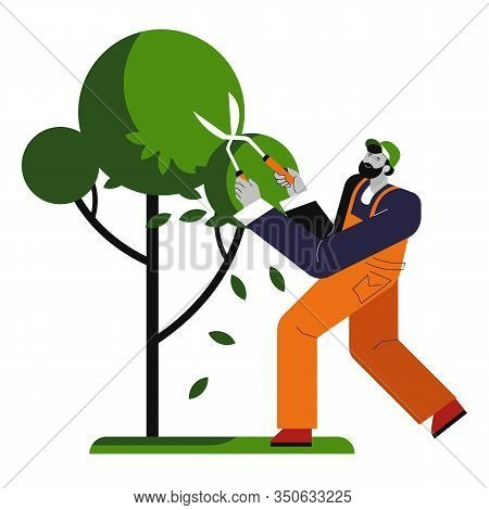 Man Cutting Tree, Gardener Trims Plant, Isolated Character