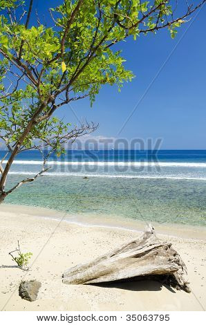 Beach And Coast Near Dili In East Timor