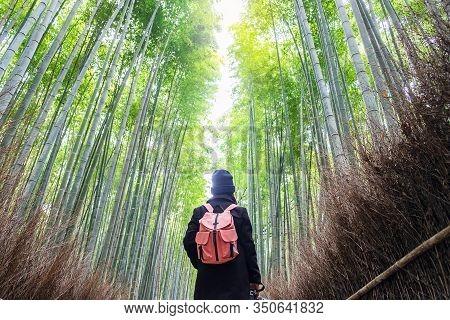 Young Woman Traveling At Arashiyama Bamboo Grove, Happy Asian Traveler Looking Sagano Bamboo Forest.