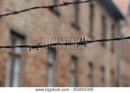 Barbed Wire Around A Concentration Camp. Prison Fence, Maximum Security Colony. Auschwitz Concentrat