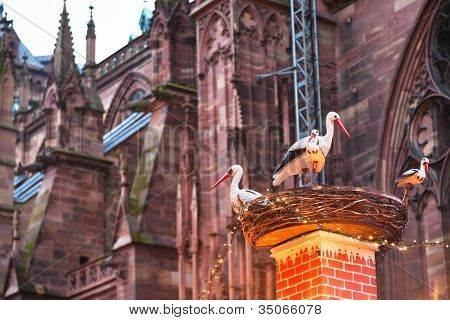 Stork Nest Near Cathedral In Christma